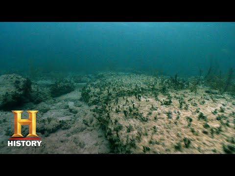 Ancient Aliens: The Remnants of Atlantis (Season 10) | History