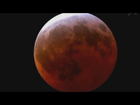 Expected for Clear skies rare Supermoon Lunar Eclipse