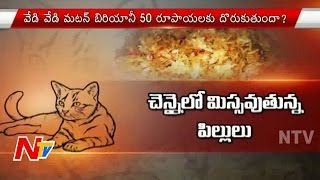 Cat Meat Biryani Served in Chennai Roadside Canteens | Cat Biryani Sales in Chennai | Focus | NTV