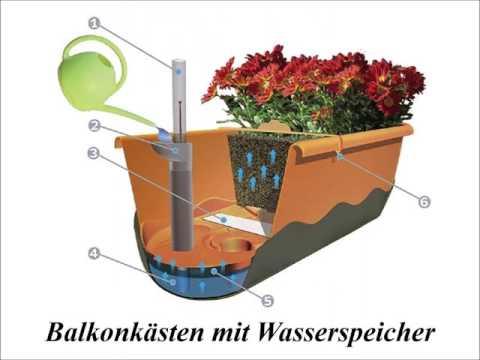 Balkonkästen und Blumenampeln mit Wasserspeicher von modern printing