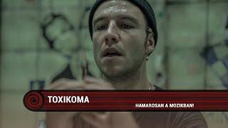 Toxicoma