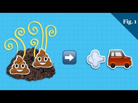 Could Poop Power Our Cars
