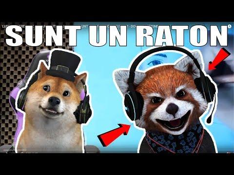 RATONUL REACTIONEAZA LA REACTIA LUI INSANITY LA CLIPUL MEU! :O (видео)