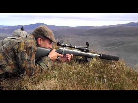Deer Stalking at Alladale 2011