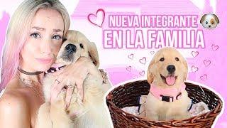 Video NUEVA INTEGRANTE EN LA FAMILIA!! 🐶👑💕 LA MEJOR SORPRESA!!! MP3, 3GP, MP4, WEBM, AVI, FLV Januari 2019