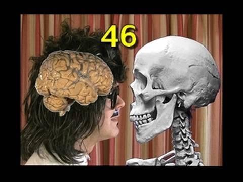 Vídeos Educativos.,Vídeos:Lesson 46