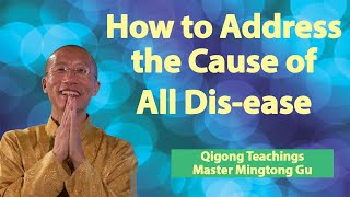 Video Bits of Wisdom - How to Address All Causes of All Dis- eases MP3, 3GP, MP4, WEBM, AVI, FLV Mei 2019