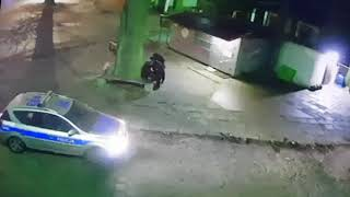 Dwóch policjantów z Gryfina oskarżonych o pobicie nietrzeźwego 27-latka