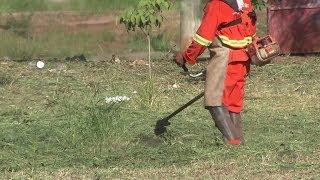 Epidemia de dengue faz prefeitura de Bauru limpar mais de 515 mil m² de terrenos
