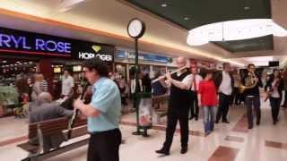 Noyelles Godault France  City pictures : Flashmob symphonique - Centre commercial Auchan Noyelles