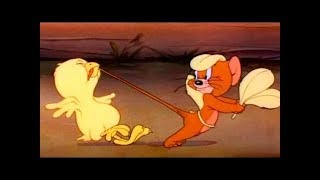 Tom And Jerry English Episodes - Fine Feathered Friend - Cartoons For Kids
