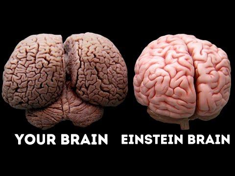 What Made Albert Einstein A Genius?