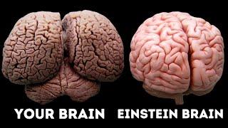 Video What Made Albert Einstein A Genius? MP3, 3GP, MP4, WEBM, AVI, FLV Maret 2019