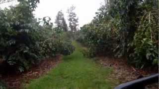7. John Deere Gator 855D Farm Fun.