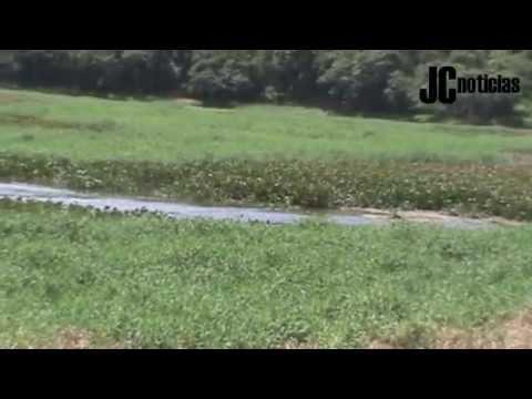 Lago Azul, em Pará de Minas, agoniza sem esperança de melhora
