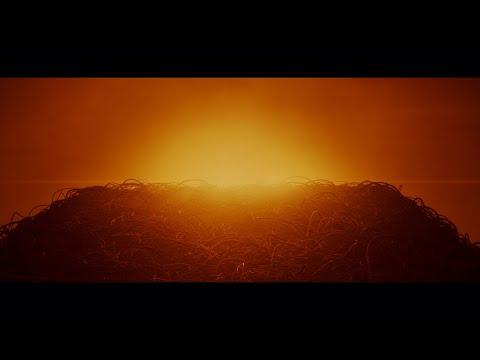 Musikvideo: Swedish House Mafia – Lifetime
