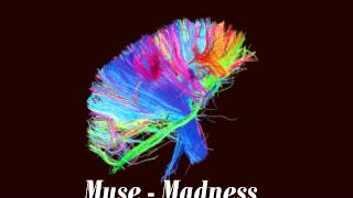 MUSE - Panic Station official music