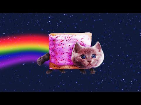 Nyan Cat IN REAL LIFE