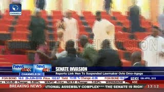 Thugs Invade Nigeria's Senate, Steal Mace