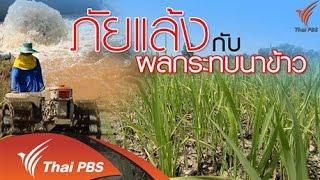 วาระประเทศไทย - ภัยแล้งกับผลกระทบนาข้าว