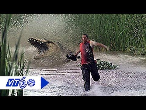 Cá sấu sông Nile ăn thịt người xuất hiện ở Mỹ | VTC