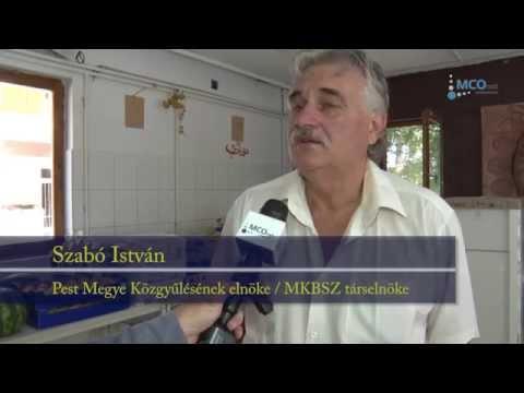 Interjú Szabó István megyeelnökkel a Magyarországon élő kínai közösség adományával kapcsolatban