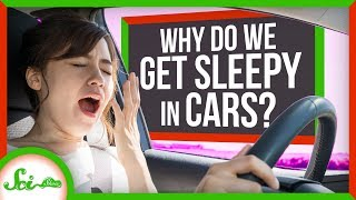 Carcolepsy: Why Do We Get Sleepy in Cars? by  SciShow