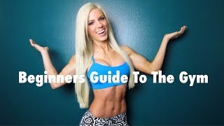 Complete Beginners Guide to the Gym