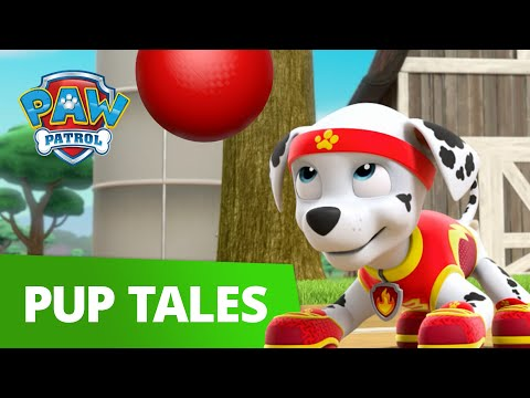 PAW Patrol | All Star Pups! | Rescue Episode | PAW Patrol Official & Friends!