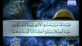 المصحف المرتل 06 للشيخ توفيق الصائغ حفظه الله