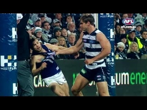 Freo and Cats Rivalry – AFL
