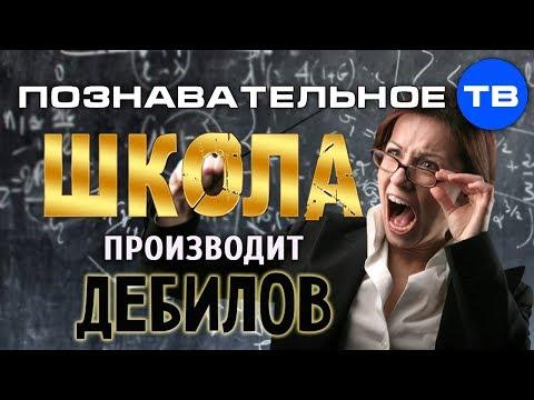 Школа производит дебилов (Познавательное ТВ Михаил Величко) - DomaVideo.Ru