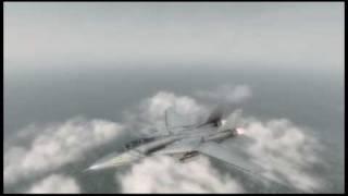 Freiflug mit einer F-14 tomcat