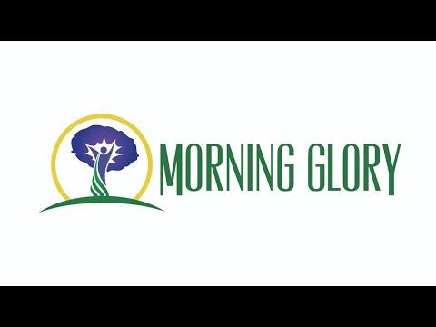 Morning Glory 101519 – Sex Change Regret – Return to Gender