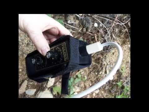 Falcon Metal Detector--Gold mining tutorial