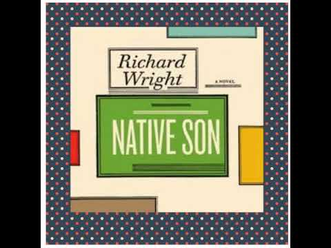 Native Son by Richard Wright (Outline & Summary)
