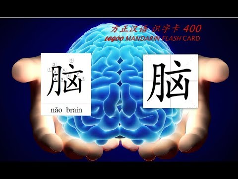 Origin of Chinese Characters - 1061 脑 腦 nǎo brain - Learn Chinese with Flash Cards