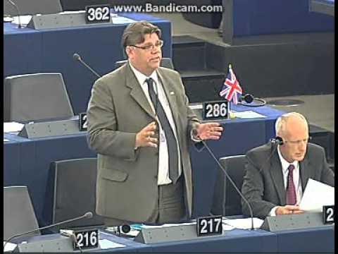 Timo Soini ei halua Islantia EU-jäseneksi tekijä: Riquman1990