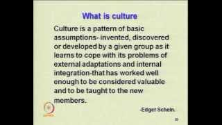 Mod-02 Lec-17 Impact Of Environment And Cultural Variables On Organization Structure&style(contd1)