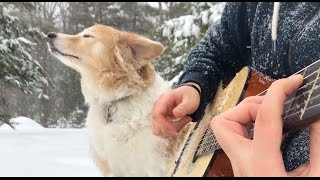 Filmed during yesterday's blizzard w/ Maple. This song brought me to tears when watching the film and I knew I had to cover it on...