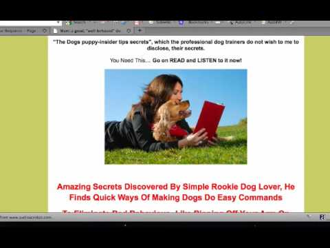 Harlan Kilstein Tactic10 Dog Training II