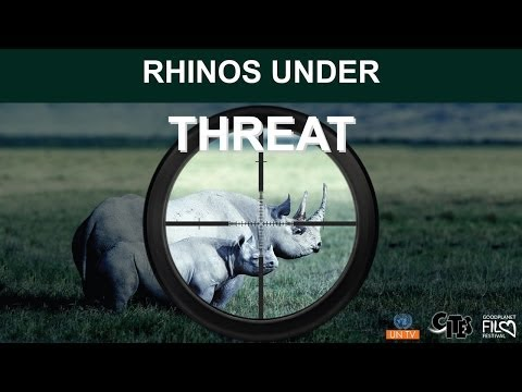 rhinos - This movie was produced by UNTV in collaboration with the CITES Secretariat in an effort to raise public awareness of the current crisis faced by rhinoceros ...