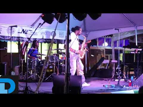 Video: Watertown Tennessee Music and Arts Festival