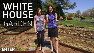 Visiting the White House Kitchen Garden by Eater