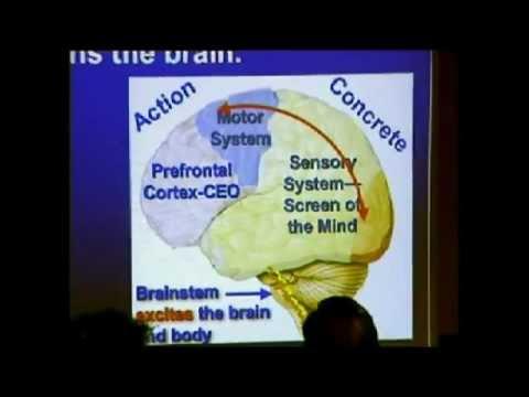 MT combatendo o estresse