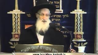 """הרב יעקב יוסף – הלכות ספירת העומר (ה'תשע""""ג)"""