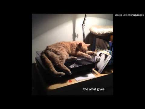 The What Gives - When You Drop Dead