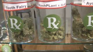 tokin daily: Pride in Medicine dispensary tour by Tokin Daily
