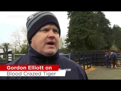 Gordon Elliott On His Hurdlers