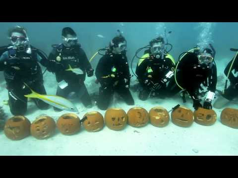 Underwater Pumpkin Carving in the Florida Keys
